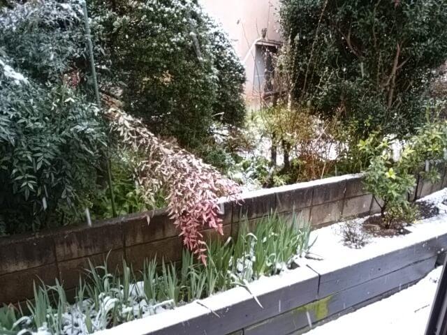 2018年3月21日春分の日の雪景色